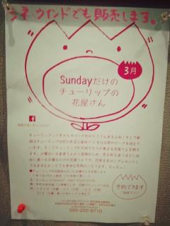 2014-02-28-20-20-31_deco