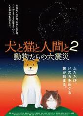 web2013犬と猫と人間と2